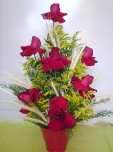 Arranjo de rosas colombianas no balde