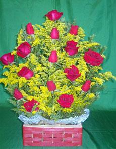 Baú de rosas vermelhas