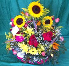 Cestão super tropical - Vários tipos de flores